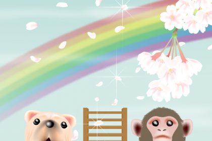 天国へと続く虹