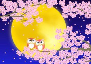 静月桜(しづきさくら)