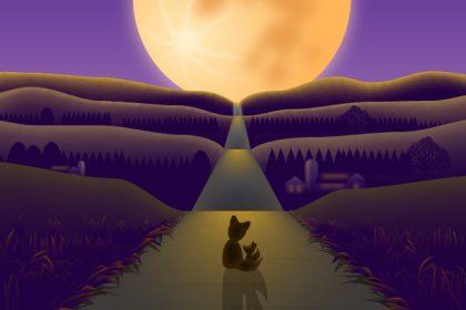 次代を灯す名月の道